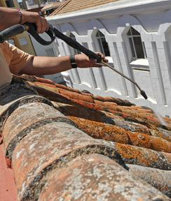 nettoyer toiture Cerny